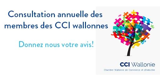 enquete-CCIWallonie