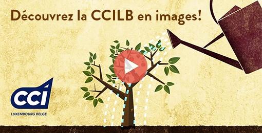 presentation-CCILB
